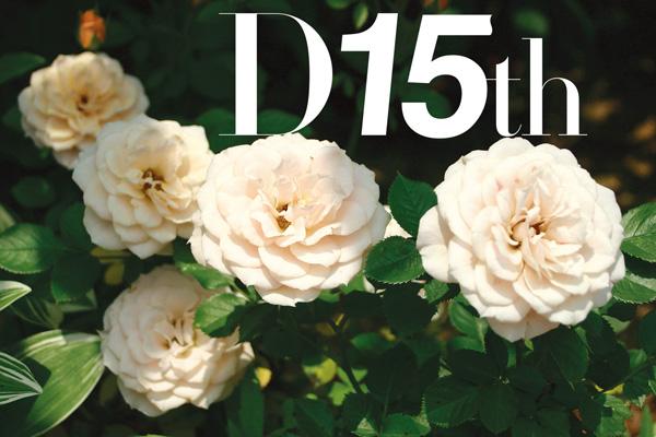 D+15th_rose_0599.jpg
