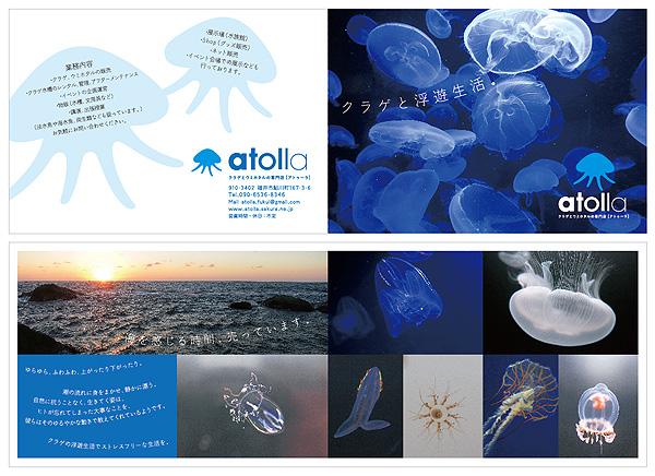 atolla_B6panf.jpg
